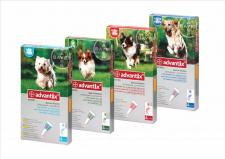 advantix® - užlašinamasis tirpalas šunims nuo erkių ir blusų N4 (4 pipetės)