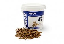 FIBOR® papildas virškinimo ir analinių liaukų sveikatai palaikyti