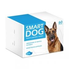 SMART DOG - papildas smegenų ir nervų sistemos veiklos funkcijai gerinti