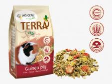 Vadigran TERRA GUINEA PIG - visavertis pašaras jūrų kiaulytėms