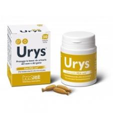 Urys® - papildas šlaplės ir šlapimo pūslės gleivinės funkcijai palaikyti