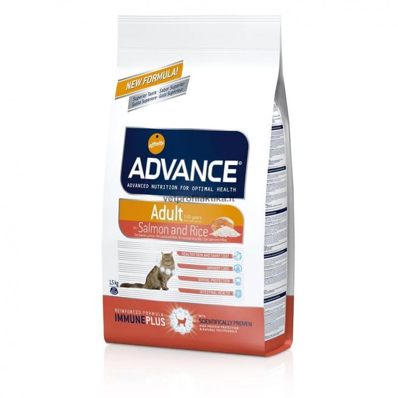 Advance ADULT with Salmon and Rice - ėdalas suaugusioms katėms
