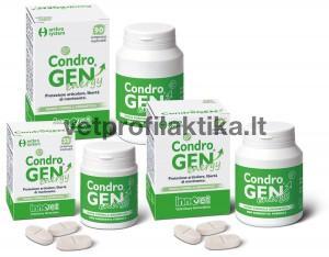CondroGEN® Energy - sąnarių stiprinimui ir apsaugai